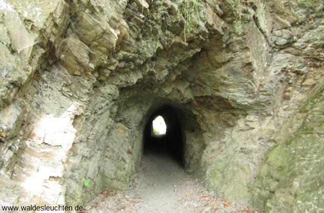 Tunnel am Wilhelmsblick