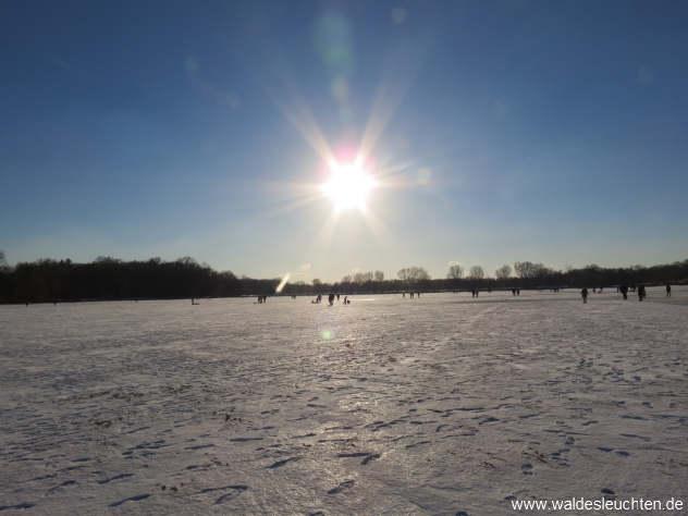 Sonne über dem Großen Dutzendteich